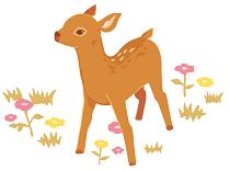 bambi_l30
